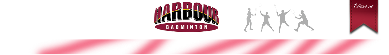 Badminton North Harbour Logo